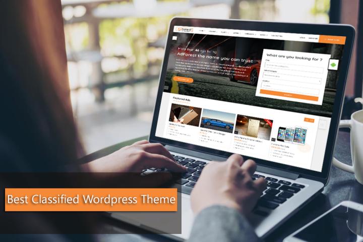 best wordpress classified theme
